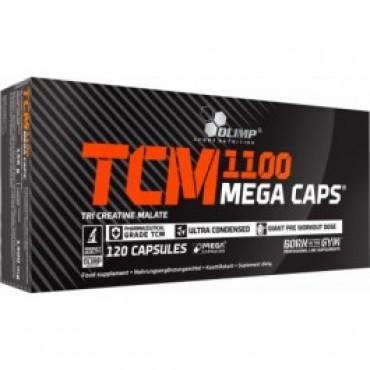 TCM 1100