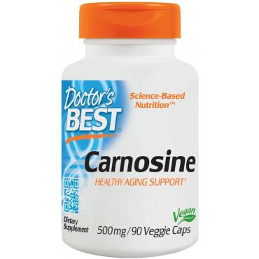 Carnosine, 500mg - 90 vcaps