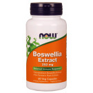 Boswellia Extract Plus Turmeric Root Extract, 250mg - 60 vcaps