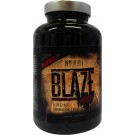 Blaze Reborn