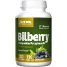 Bilberry + Grapeskin Polyphenols - 120 vcaps