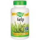 Kelp - 180 vcaps