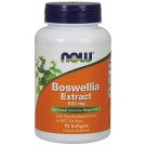Boswellia Extract, 500mg - 90 softgels