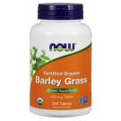 Barley Grass, 500mg - 250 tablets
