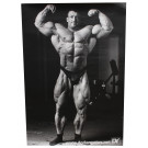 Dorian Yates Poster - 1 pcs. (set no. 8)