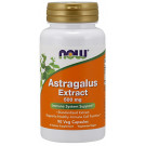Astragalus Extract, 500mg - 90 vcaps
