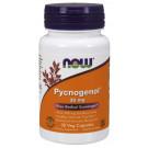 Pycnogenol with 300mg Bioflavonoids, 30mg - 30 vcaps