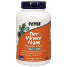 Red Mineral Algae - 180 vcaps