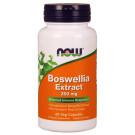 Boswellia Extract Plus Turmeric Root Extract, 250mg - 60 vcaps