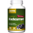 Blackcurrant, 200mg - 60 vcaps