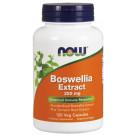 Boswellia Extract Plus Turmeric Root Extract, 250mg - 120 vcaps